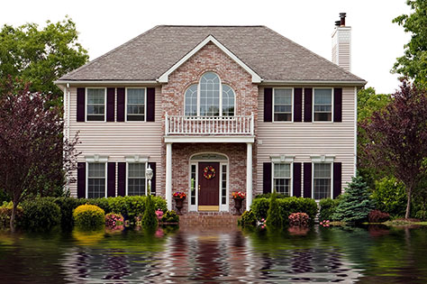 Homeowners Primary and Excess Flood
