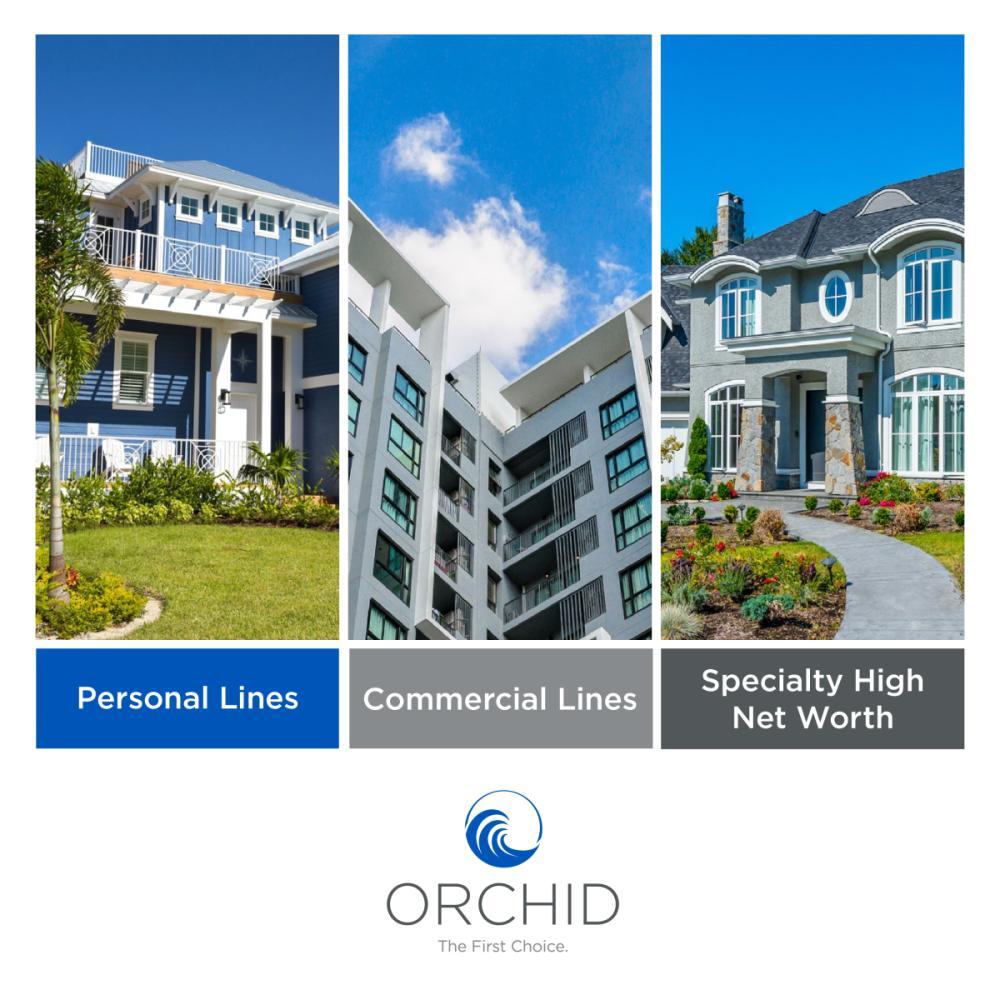 Orchid Insurance Enterprise Brochure