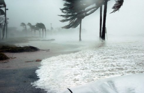 How to Prepare Before a Hurricane or Windstorm