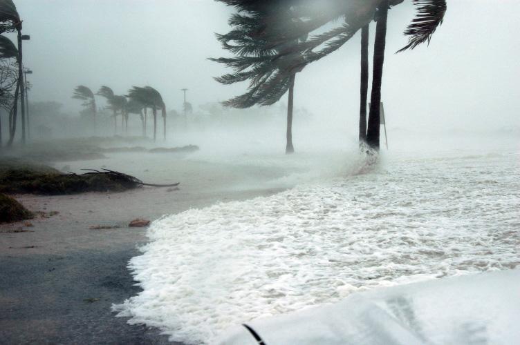 Prepare for a hurricane or windstorm